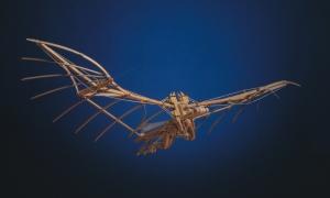 Leonardo da Vinci , Macchina volante