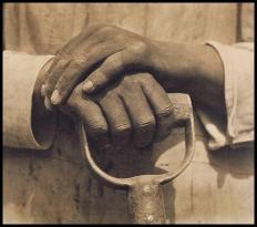 Mani di Tina Modotti