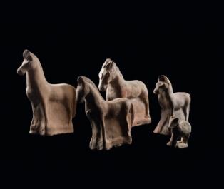 Gavalli in terracotta, collezione Gorga